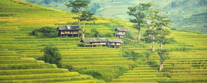 regel een visum voor het prachtige Vietnam